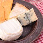 色々なナチュラルチーズの種類と食べごろについて